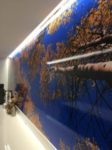Custom Wall Mural Installed